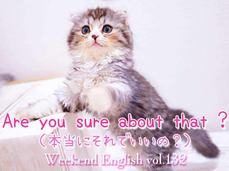 週末英語(weekend english)「Are you sure about that ?(本当にそれでいいの)」