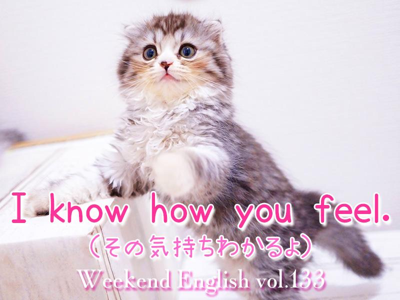 週末英語(weekend english)I know how you feel.(その気持ちわかるよ)