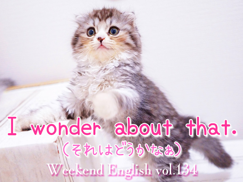 週末えいご(weekend english)I wonder about that.(それはどうかなぁ)