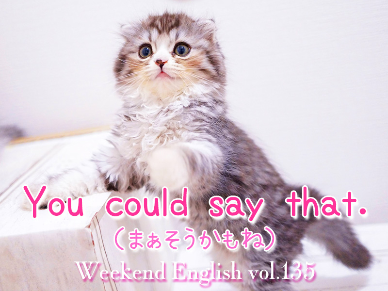 週末英語(weekend english)You could say that.「まぁそうかもね」