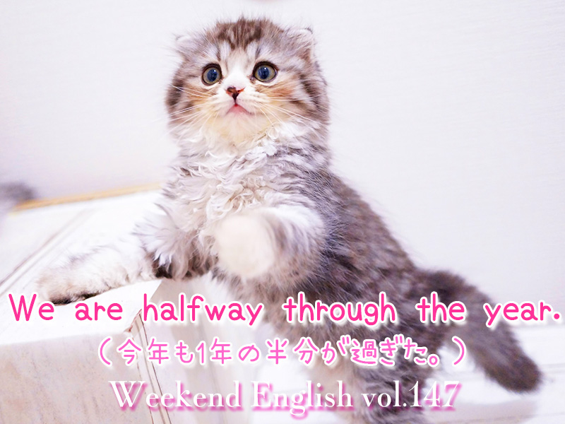 週末英語(weekend english)We are halfway through the year.(1年の半分が過ぎた)