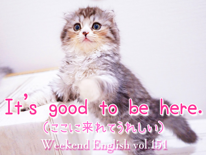 週末英語(weekend english)It's nice/good to be here.