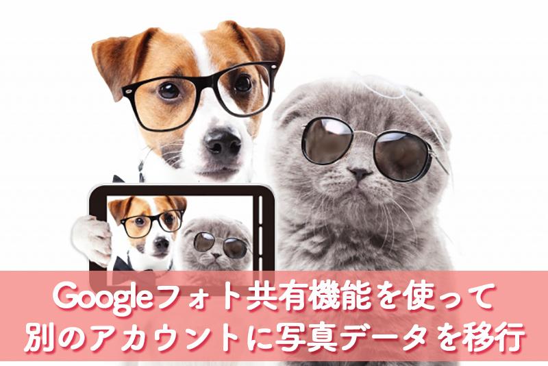 Googleフォト共有機能を使って別のアカウントに写真データを移行