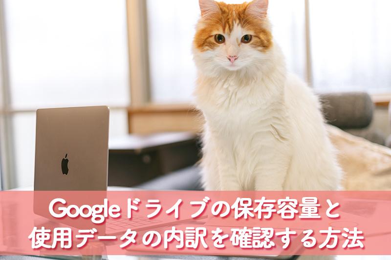 Googleドライブの保存容量と使用データの内訳の確認