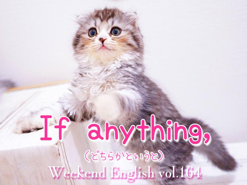 週末英語(weekend english)if anything(どちらかというと)