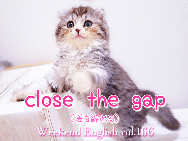 週末英語(weekend english)close the gap:差を縮める