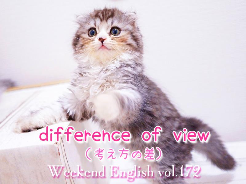 週末英語(weekend english)考え方の差(difference of view)