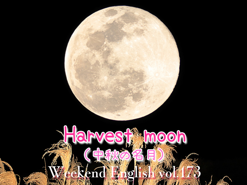 週末英語(weekend english)中秋の名月(harvest moon)