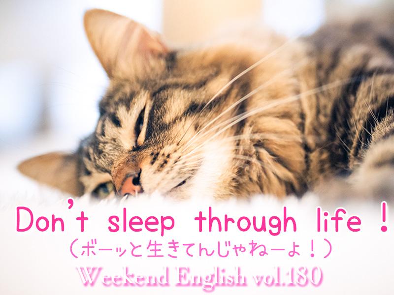 週末英語(weekend english)ボーッと生きてんじゃねーよ!(Don't sleep through life)