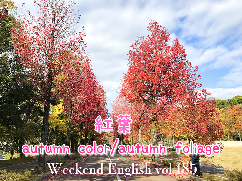 週末英語(weekend english)紅葉(autumn foliage)