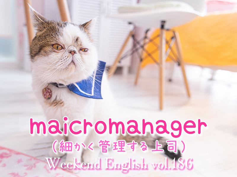 週末英語(weekend english)細かく管理してくる上司(micromanager)