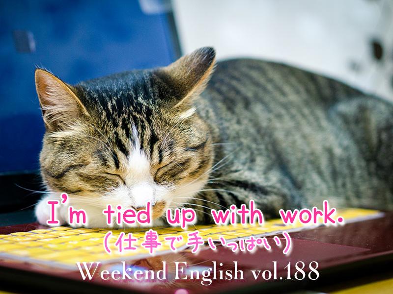 週末英語(weekend english)仕事で手いっぱい(I'm tied up with work.)