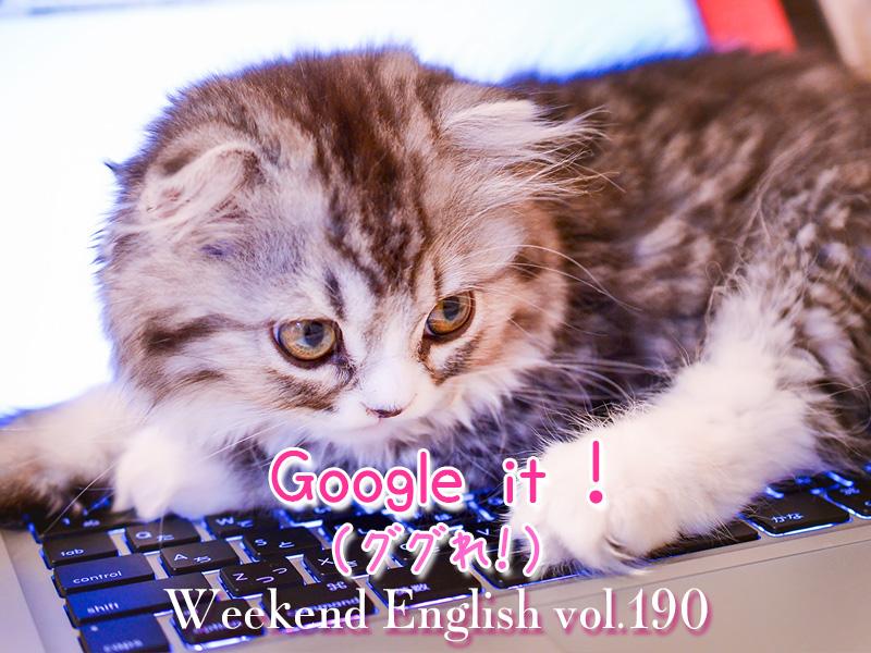 週末英語(weekend english)ググれ(Google it)