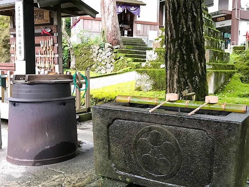 大岩山日石寺メグスリノキのお茶
