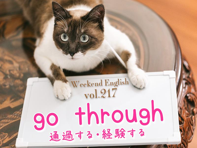 週末英語(weekend english)go through(通り抜ける・経験する)