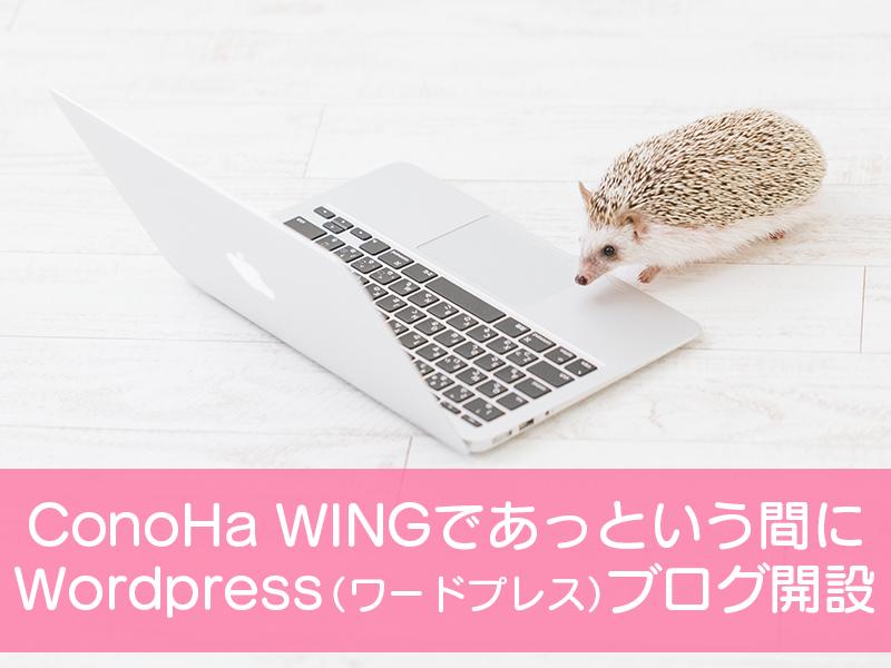 ConoHaWINGであっという間にWordPress(ワードプレス)ブログ開設
