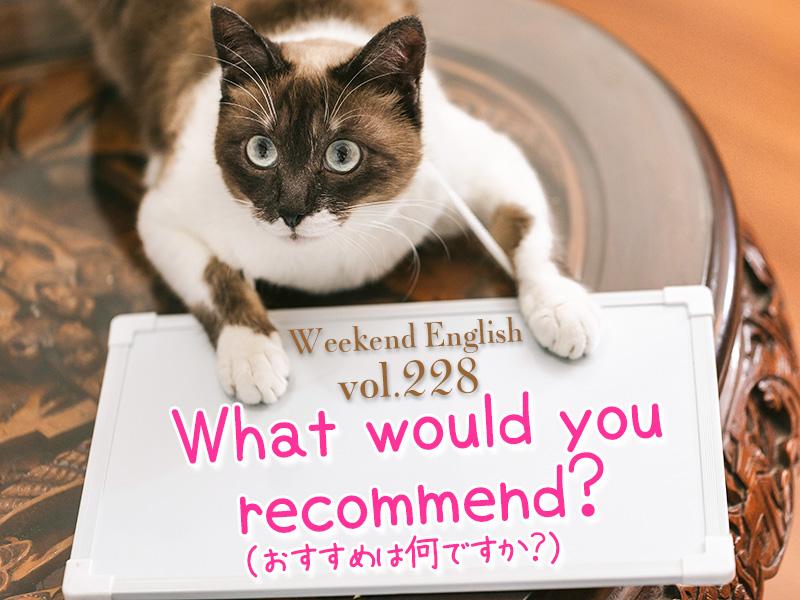おすすめは何ですか(What would you recommend?)週末英語(weekend english)