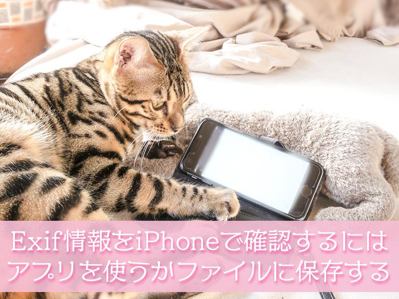 Exif情報をiPhoneで確認するにはアプリを使うかファイルに保存する