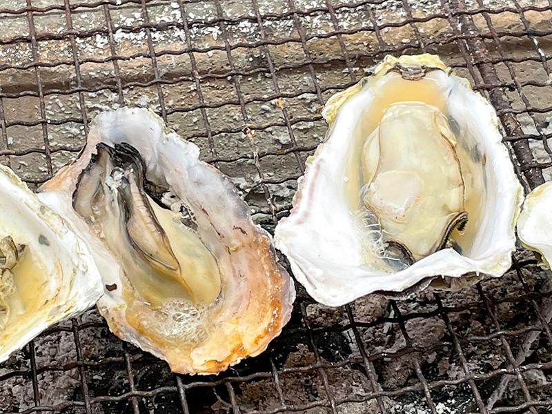 能登牡蠣・なぎさガーデン