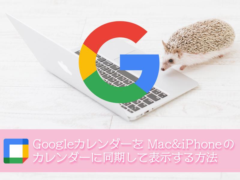 GoogleカレンダーをMac と iPhone のカレンダーに同期して表示する方法