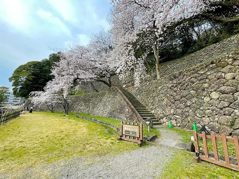 金沢城・申酉櫓下の石垣