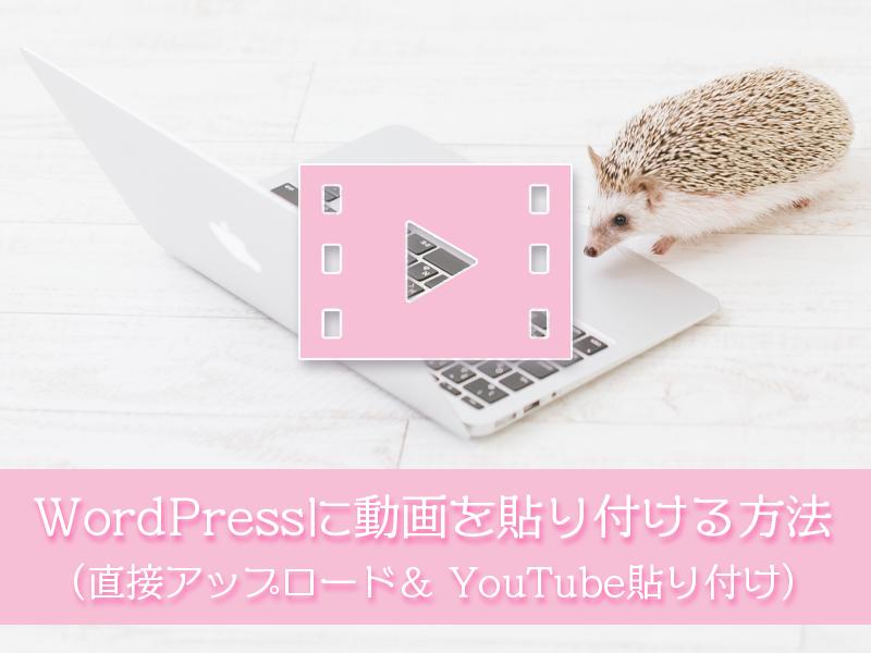 ワードプレスに動画を埋め込むには直接アップロードする方法とYouTubeを貼り付ける方法がある