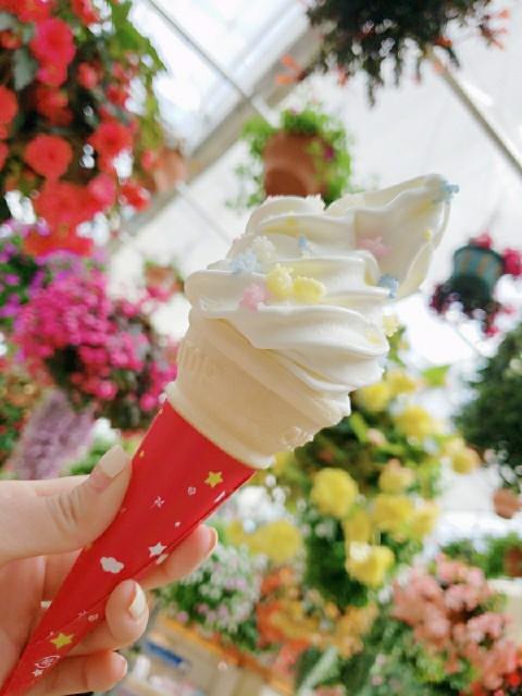 f:id:m-himemiko-rainbowmaterial9999:20210714232511j:image