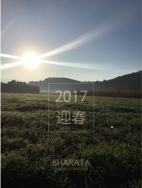 f:id:m-ima:20170101083919j:plain