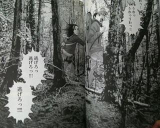 f:id:m-kikuchi:20100902004406j:image