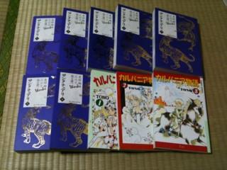 f:id:m-kikuchi:20110105010042j:image