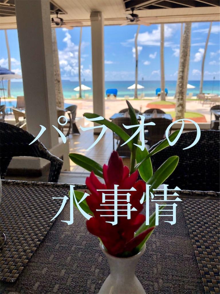 f:id:m-midori1008:20191024170359j:image