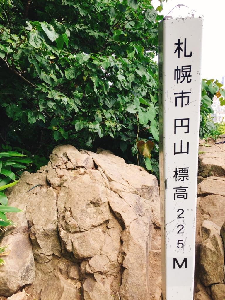 f:id:m-mogutamoguo:20170818185926j:plain