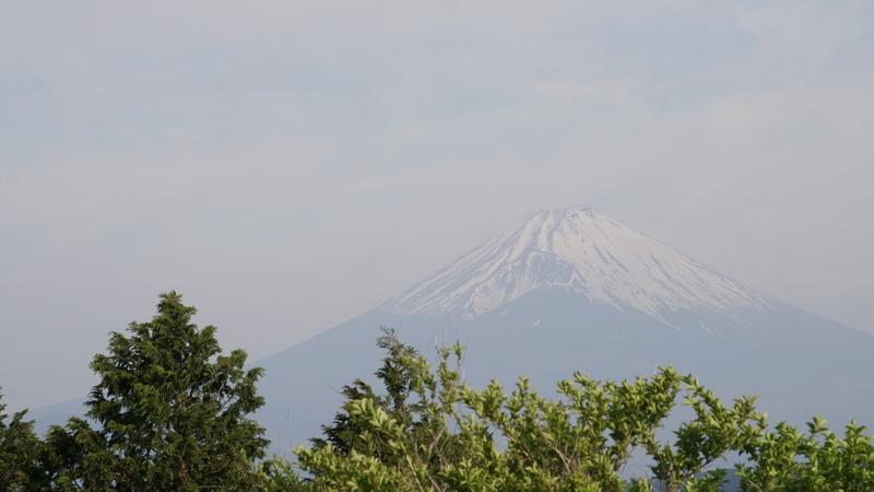 f:id:m-sugiyama-s61:20190512125956j:plain