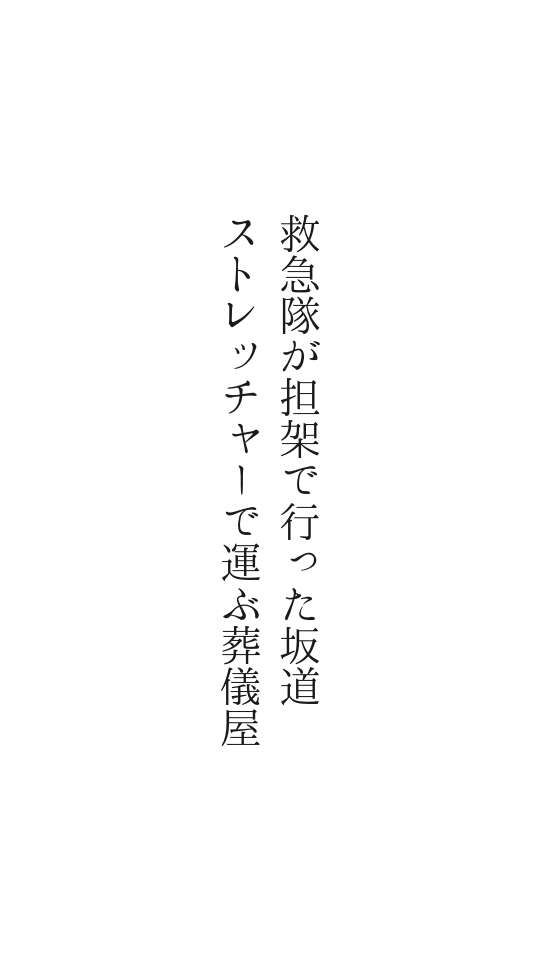 f:id:m-suzu:20161204225027j:plain