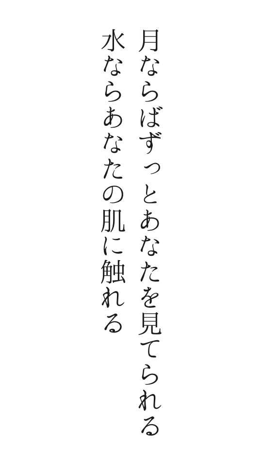 f:id:m-suzu:20170106072633j:plain