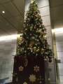 20171213 大崎 クリスマスツリー