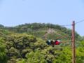金閣寺入り口前から左大文字