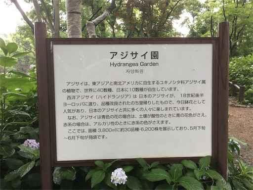 長居公園植物園 アジサイ園