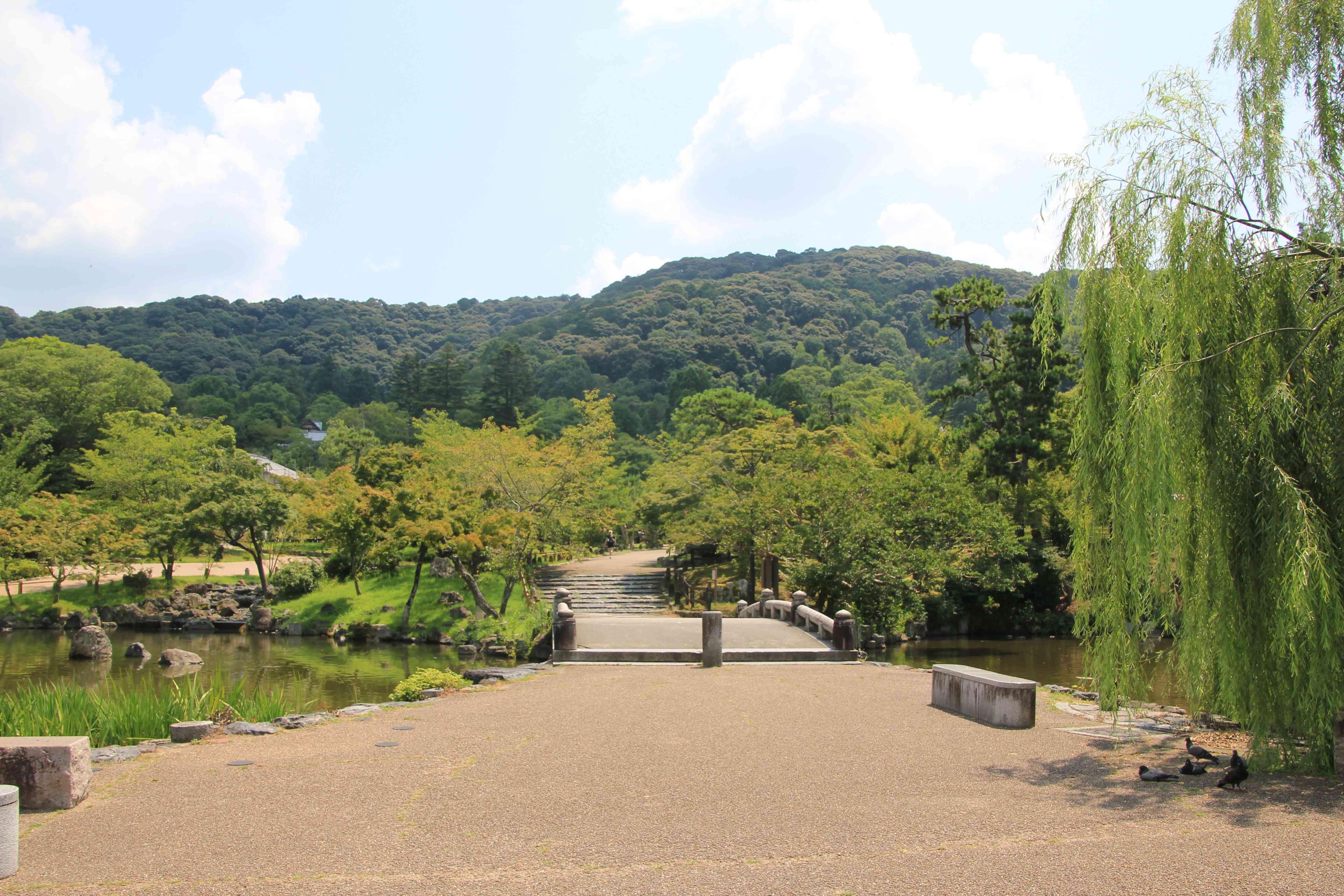 人影のない円山公園。東山の方