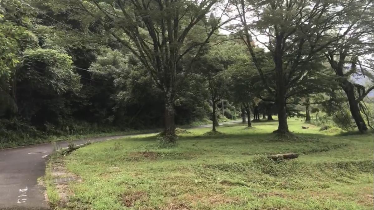 余呉湖を周回する余呉湖線と余呉湖の間に緑地帯があり公園を歩いているようだった。