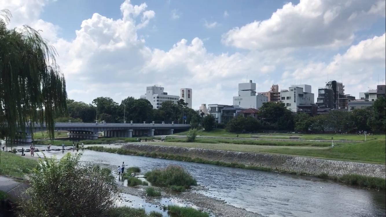 河合橋たもとから高野川、鴨川公園、賀茂大橋