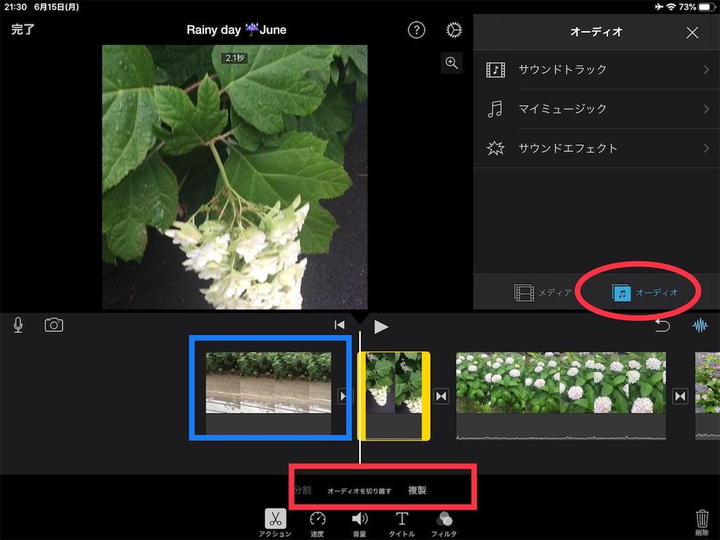 f:id:m421miyako:20200615214617j:image