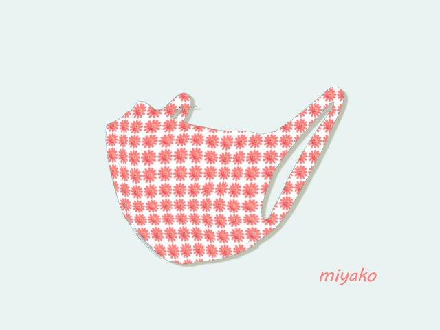 f:id:m421miyako:20210406205900j:plain