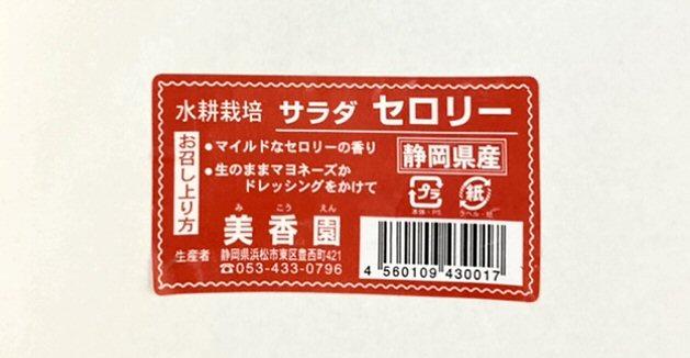 f:id:m421miyako:20210822140235j:plain