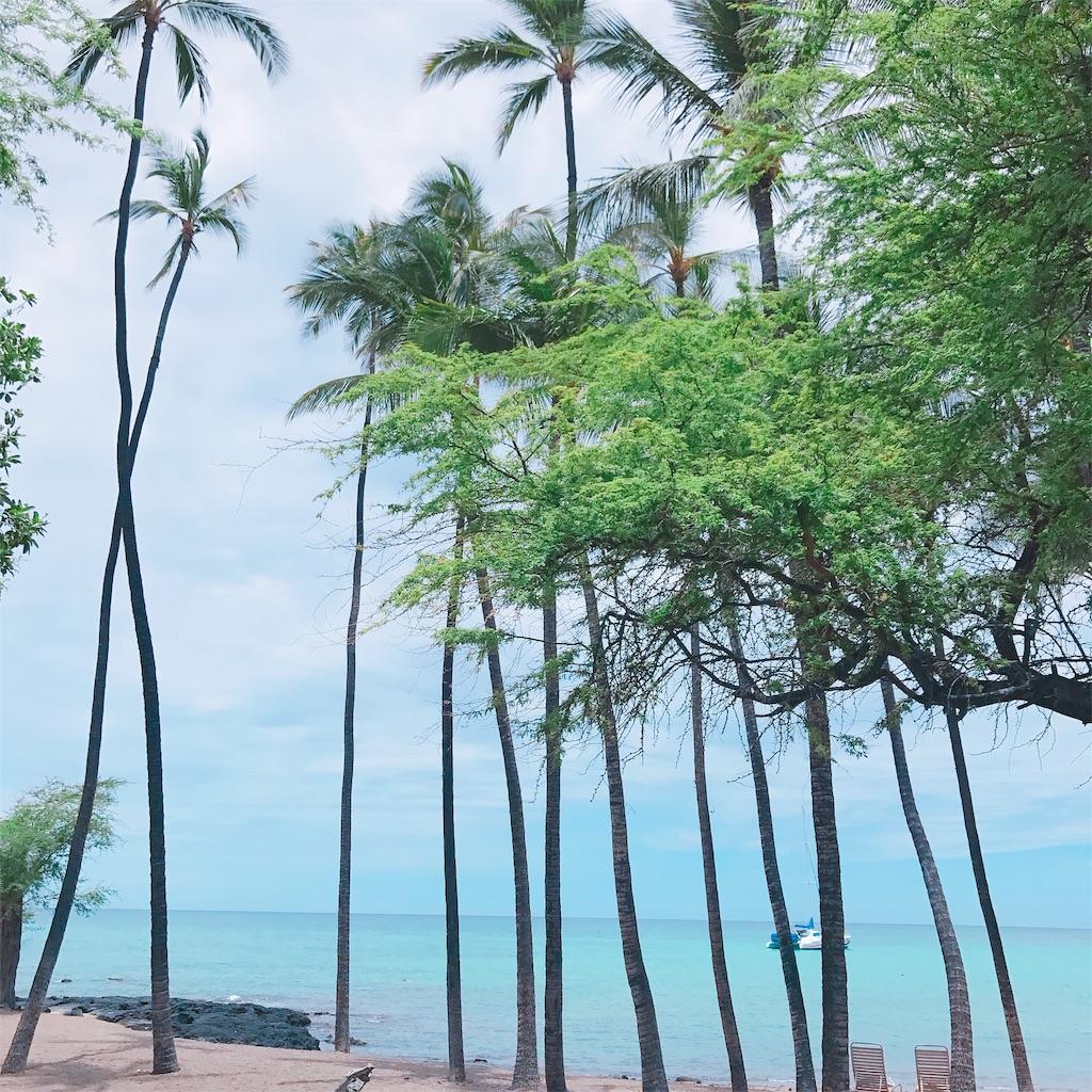 ハワイ島ビーチ:wide=400