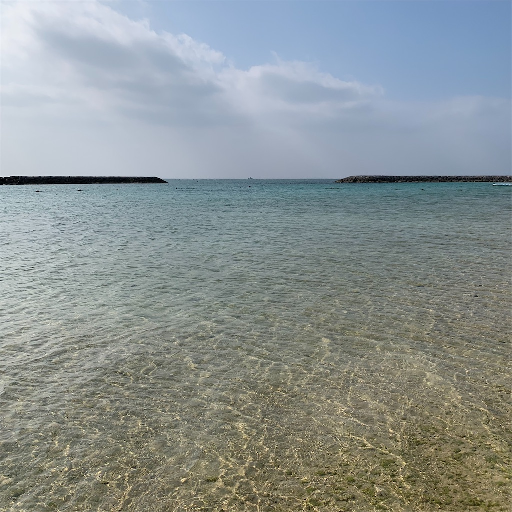f:id:m_by_the_sea:20200206184450j:image:w500