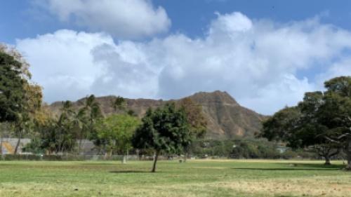 ワイキキ ハワイ 危険な場所 危険なエリア 公園