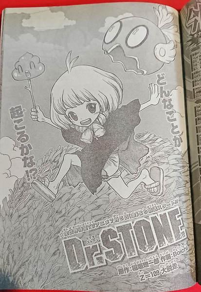 Dr.STONE(ドクターストーン)アラレ