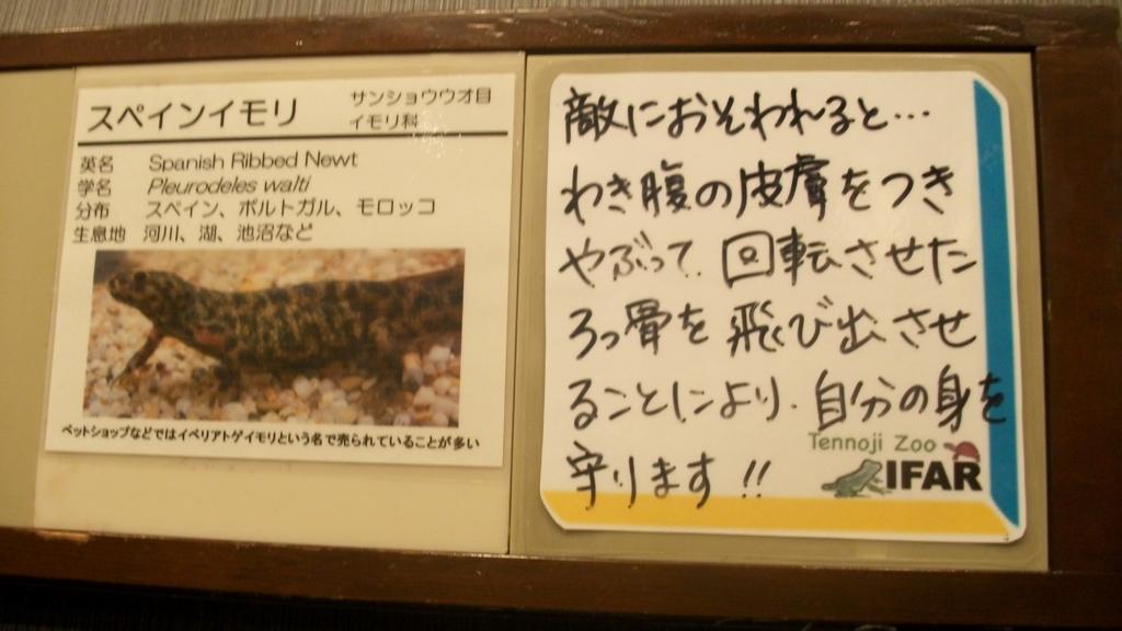 f:id:m_samukawa:20170217002735j:plain