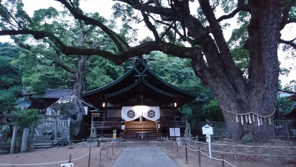 f:id:m_samukawa:20170715230930j:plain